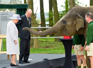 The Queen & Prince Philip open elephant care centre at London Zoo